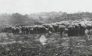 Hoy se cumplen 101 años de las apariciones de Fátima - Página 2 Onlookers-under-rain_a_306